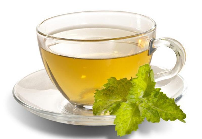 Çay içerek sağlıklı kalabilir miyim diye sormayın, elbette kalamazsınız. Yeşil Çay sağlıklı olmanızda sadece yardımcı olan bir maddedir.